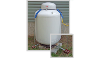 Sling upright propane tank anchoring system